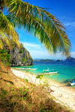 scène tropicale Photo stock