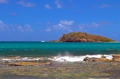 Scène tropicale Photo libre de droits