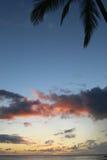 Scène tropicale de coucher du soleil Image stock