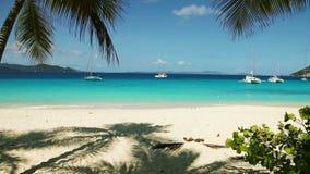 Scène tropicale de plage banque de vidéos