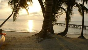 Scène tropicale de plage de kayak banque de vidéos