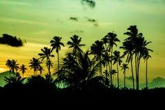 Scène tropicale Portho Gallinhas Brésil de coucher du soleil Photo libre de droits