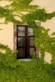 Scène type de l'île grecque de Santorini Photographie stock libre de droits