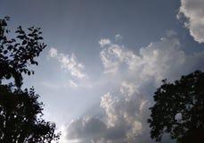 Scène van hemel met wolken en bomen Stock Foto's