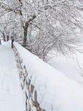 Scènes de neige Photographie stock
