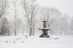 Scènes de neige Image stock
