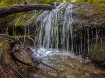 Scènes le long de traînée appalachienne en montagnes fumeuses la Caroline du Nord Photo stock