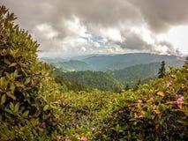 Scènes le long de traînée appalachienne en montagnes fumeuses la Caroline du Nord Photographie stock libre de droits