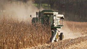 Scènes van het oogsten van graan stock footage