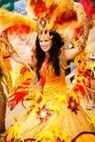 Scènes van Samba Royalty-vrije Stock Foto's
