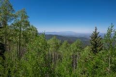 Scénique donnez sur avec les forêts vert-foncé et les Mountain View Photo libre de droits