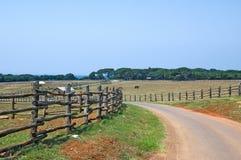 Scénique rural Photo libre de droits