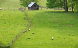 Scénique rural de la Virginie photographie stock