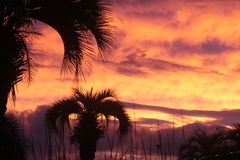 SC острова Johns захода солнца стоковые фотографии rf