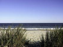 sc мирта пляжа Стоковое Изображение RF