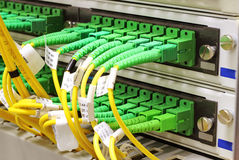 SC connectors in patch panel Royalty Free Stock Photo