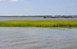 SC de Charleston, o 7 de agosto: Tanoeiro River Landscape de Charleston em South Carolina Fotografia de Stock