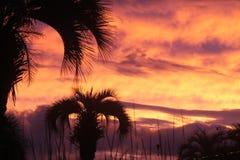 Sc dell'isola di Johns di tramonto Fotografie Stock Libere da Diritti