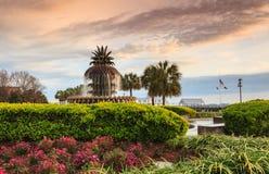 Sc di Charleston Waterfront della fontana dell'ananas Immagini Stock Libere da Diritti