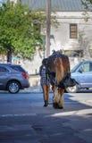 SC do centro de passeio de Charleston do cavalo da menina Imagens de Stock