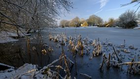 Sc?ne gel?e d'hiver au-dessus d'?tang de Hartley Mauditt ? l'?glise de St Leonard, bas du sud parc national, Hampshire, R-U photo stock
