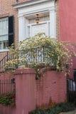 SC residencial de Charleston de la fila del arco iris de la primavera del hogar de la entrada Imagenes de archivo