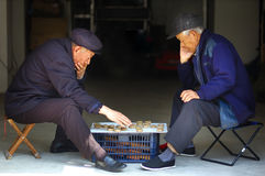 Scacchi del cinese del gioco dell'uomo anziano Immagini Stock Libere da Diritti