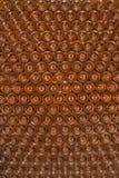 Scaffalatura della bottiglia di vino di Tokay Immagini Stock