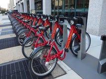 Scaffale capitale della bici di BikeShare Immagine Stock Libera da Diritti
