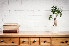 Scaffale con i libri e la parete bianca e del fiore Fotografia Stock