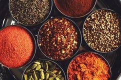 Scaffale con le spezie indiane tradizionali per cucinare Fotografia Stock