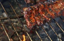 Scaffale delle costole di maiale della carne di maiale sulla griglia del barbecue del fuoco immagini stock libere da diritti