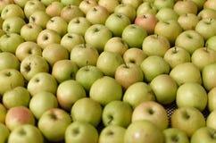 Scaffale delle mele Immagini Stock Libere da Diritti