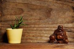 Scaffale di legno con Buddha e la pianta sulla parete del compensato Fotografia Stock Libera da Diritti