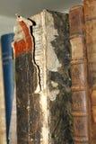 Scaffale per libri con le vecchie edizioni fotografie stock libere da diritti