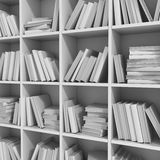 Scaffale per libri delle biblioteche in pieno dei libri Immagine Stock