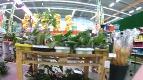Scaffali con i prodotti per il giardino nel supermercato di Domingo stock footage