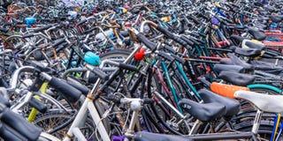 Scaffali della bici Immagine Stock