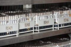 Scaffali delle provette sullo scaffale Fotografia Stock