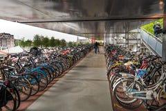 Scaffali di biciclette di Amsterdam Fotografia Stock Libera da Diritti