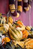 Scaffali impilati con le zucche festive di caduta Immagine Stock Libera da Diritti