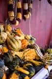 Scaffali impilati con le zucche festive di caduta Fotografia Stock Libera da Diritti