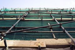 Scaffolding like there is no tomorrow. Scaffolding on the building with wood and safety net. Close-up. View from below stock image