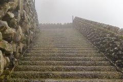 Scala bagnata nella nebbia sull'isola del Madera Immagine Stock