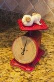 Scala cruda dell'aglio Immagini Stock