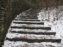 Scala della neve Fotografia Stock Libera da Diritti