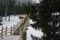 Scala di legno con recintare all'aperto Fotografia Stock Libera da Diritti