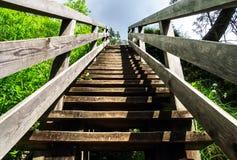 Scala di legno naturali a cielo Fotografie Stock Libere da Diritti