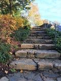 Scala di pietra in un parco che porta ad una vista del fogliame di caduta immagine stock libera da diritti