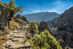 Scala di Santa Regina trail in central Corsica Royalty Free Stock Image